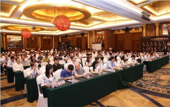 CDEC 2019中国数字智能生态大会 会议现场